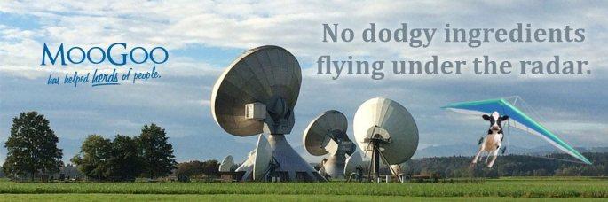 MooGoo-Web-Banner-Radar-5